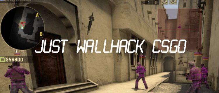 Just WallHack для CSGO (Только ESP)